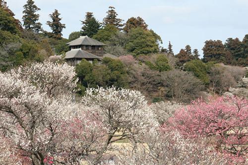 茨城県偕楽園